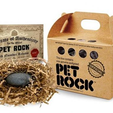 The Original Creator Gary Dahl Pet Rock Haustierrock